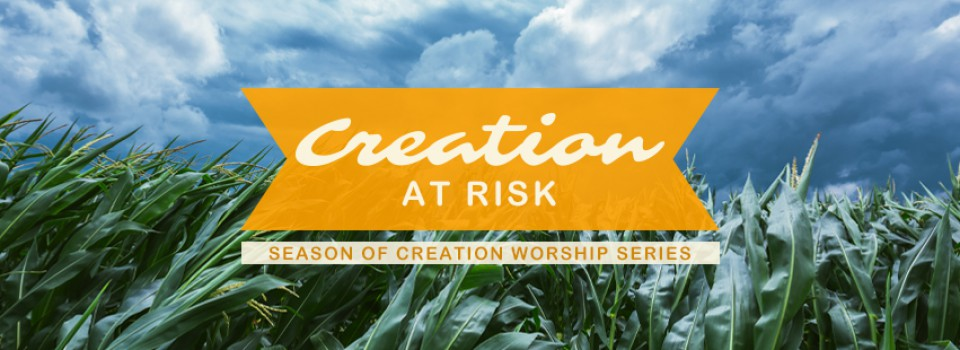 FBCover_SeasonOfCreation19_W04