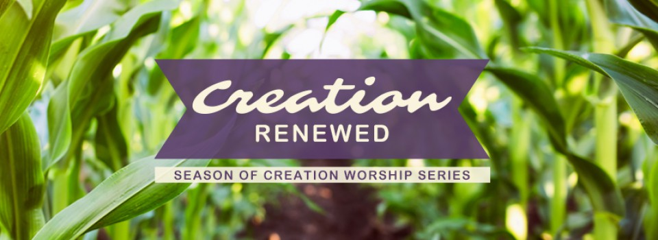 FBCover_SeasonOfCreation19_W05
